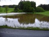 Rybník Ve Vechci a okolí 2.6. 2013